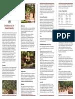 Sanskriti Residency Handbook