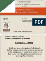 Bioetica Animales Lumi