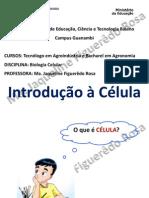 Aula 1 _Introdução à célula