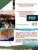 3 El Sistema Comunitario Para La Biodiversidad Sicobi