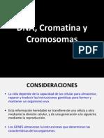 Cromatina y Cromosomas Citogenetica 2014 DFMC