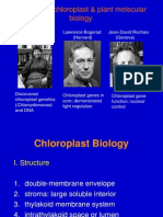 Lec3_cpDNA1