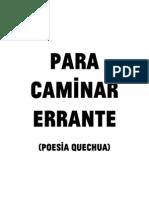 Para caminar errante (poesía quechua)