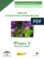 B2_CT_V4