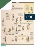 Ficha Evolucion