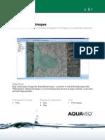 2 Introduction-Images.pdf