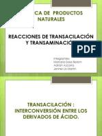 Transacilación y transaminación