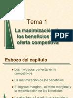 T1 Max. Beneficios I