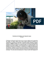 Estrategias para enseñanza del castellano como segunda lengua - Nila Vigil