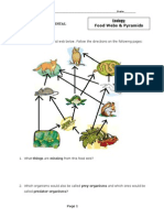 Food Webs and Pyramids