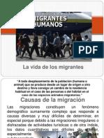 Los Migrantes