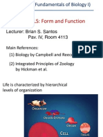 Lecture 1_Animal Cell Types and Tissues