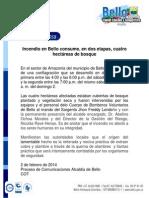 INCENDIO EN AMAZONIA.pdf