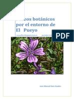 paseos botánicos por El Pueyo 2011-2013