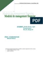 Proiect Modelul de Mg Financ