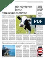 Vaca Clonada a Producir Leche
