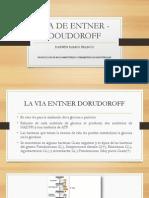 Via de Entner - Doudoroff