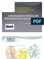Aula-3-Organização-gênica