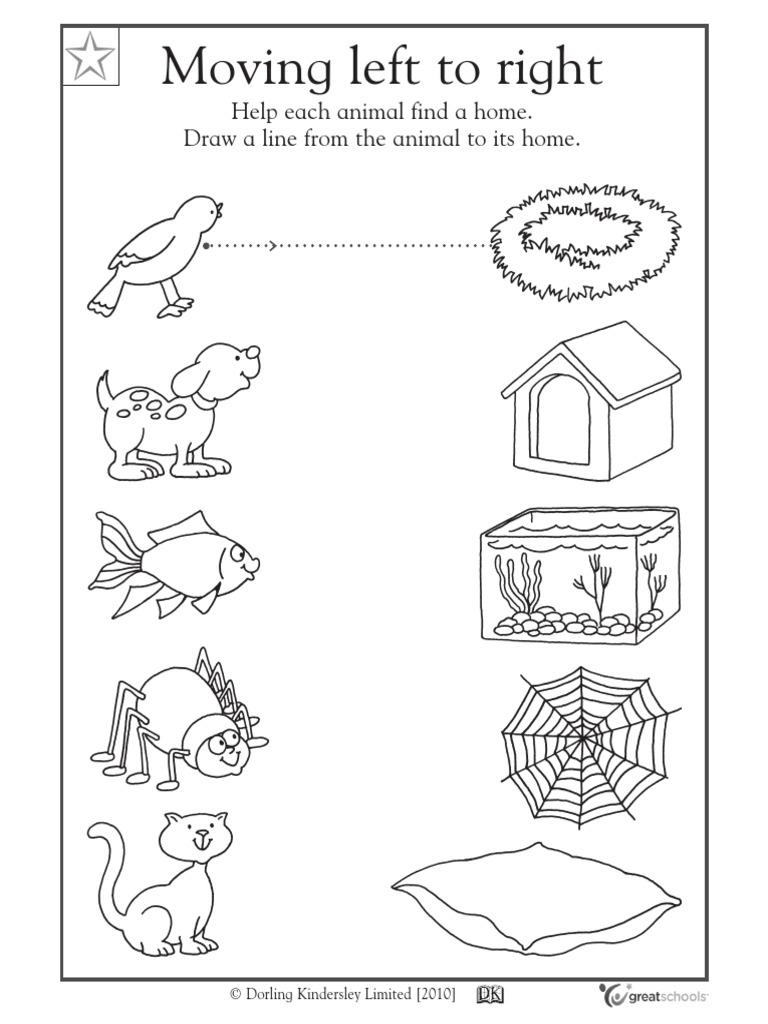Animals for Kindergarten