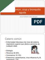 4.Catarro común, crup y bronquitis crónica