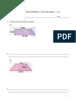 Teorema de Pitágoras - Área de um trapézio - Matemática - 8.º ano