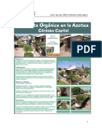 La Huerta Organica en La Azotea