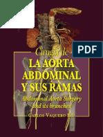 Primeras.cirugia a. Abdominal Primeras.endov