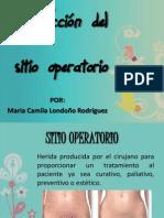 Infección del sitio operatorio
