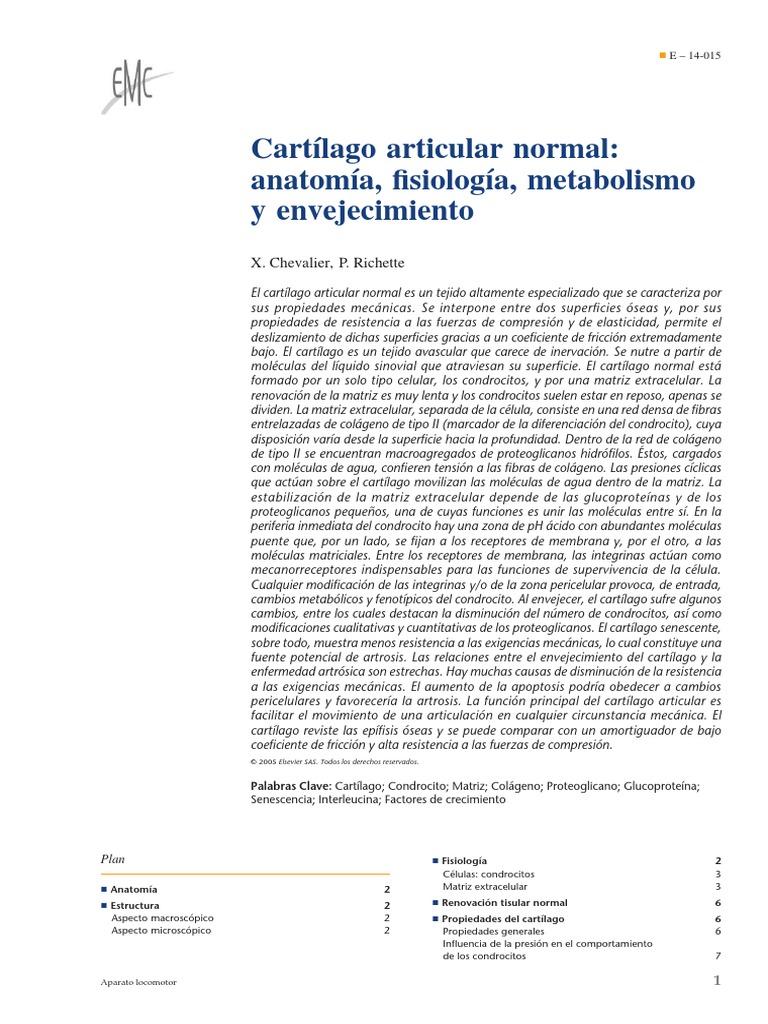 Increíble Anatomía Y Fisiología Sentidos Especiales Respuesta Clave ...
