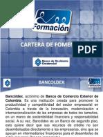 BANCOLDEX PRESENTACION
