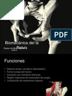 5.Biomecánica Pelvis 2012