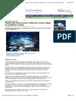 Algas Afectan Corales Del Caribe Calentamineto Global