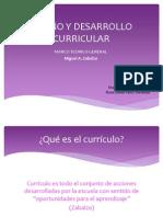 diseoydesarrollocurricular-110701212954-phpapp02