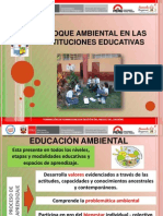 ENFOQUE AMBIENTAL