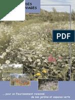 Guide Des Plantes Sauvages