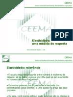 fundamentos_economicos_elasticidade2012