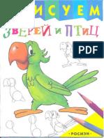 Ptici i Zveri Desen