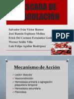 cascadadelacoagulacin-130212154126-phpapp02