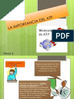 LA IMPORTANCIA DEL ATP final.pptx