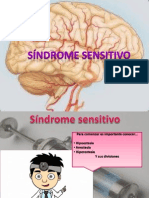 Exposicion Sindrome Sensitivo