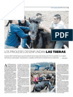 LOS FRIOLESES DESENFUNDAN LAS TIJERAS.pdf