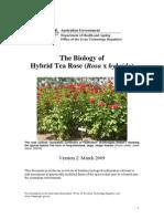 Biology Rose 09