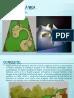 LA CASA ORGÁNICA.ppt