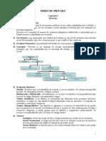 Resumen Derecho Privado [Cap. 1 a 4]