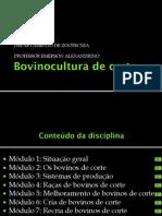 2013_1_1.Situação atual e perspectivas da Bovinocultura de corte_2011