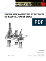 Issues and Marketing Strategies of Natural Gas in India