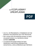 15 - Mycoplasma, Chamydia