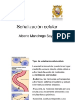 sealizacincelular2011-110621205908-phpapp02(1)