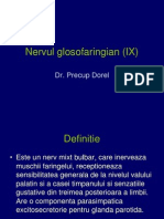 Nervul glosofaringian revizuit