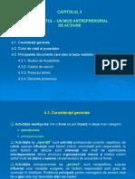 C4-Proiectul Un Mod Antreprenorial de Actiune
